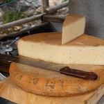 formaggio-di-malga-prodotti-tipici-friuli-venezia-giulia