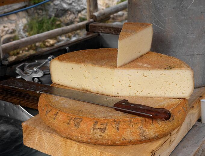 Formaggio di malga prodotti tipici friuli venezia giulia for Prodotti tipici di roma