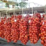 pomodori-del-piennolo_prodotti_tipici_campania