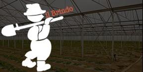azienda_agricola_biologica_pasquini_suvereto_livorno_logo_brindo_marchio_italy_Eat_food