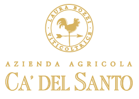 AZIENDA AGRICOLA CA DEL SANTO