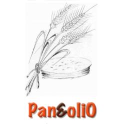 RISTORANTE PANEOLIO