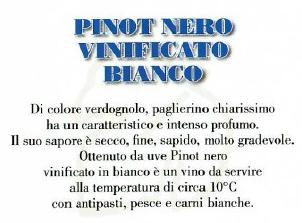pinot_nero_vinificato_bianco_santa_rita_pavia