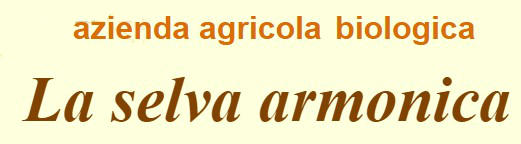 AZIENDA AGRICOLA LA SELVA ARMONICA italy_eat_food