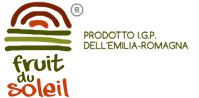 fruit du soleil ducentola voghiera ferrara logo