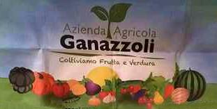 azienda_agricola_ganazzoli_mezzani_parma_logo_italy_eat_food