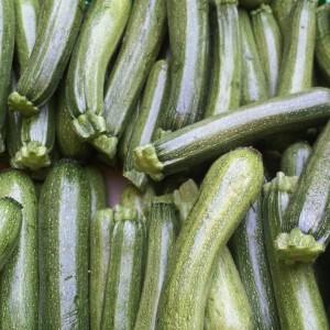 aziende_agricole_ferrara_azienda_agricola_molesini_produttori_produzione_zucchine