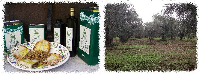 cooperativa_agricola_vaira_carpino_foggia_bunner_italy_eat_food