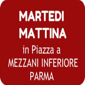 piazza_mezzani_parma