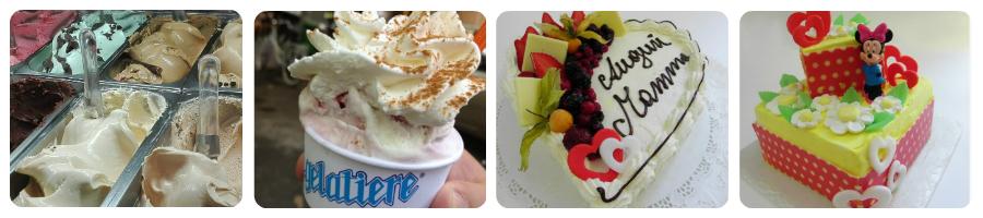 il_gelatiere_di_sesto_san_giovanni_milano_banner_torta_gelato_artigianale_italy_eat_food