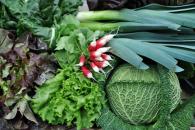 Organic producers