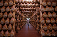 Italian hams factories