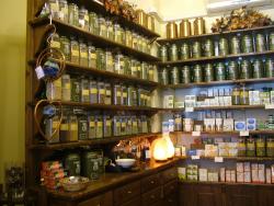 Italian herbalists