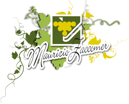 CANTINE ITALIANE FRIULI ZACCOMER MAURIZIO