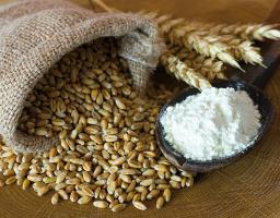 organic flour producers