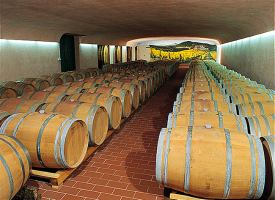 Wines production