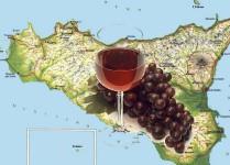 produttori_vini_sicilia_italy_eat_food