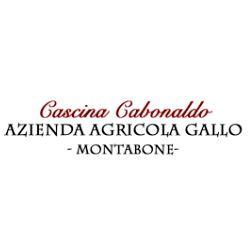 AZIENDA VINICOLA GALLO
