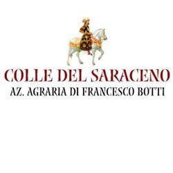 COLLE SARACENO
