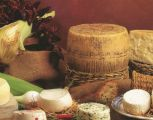 direct_sale_Basilicata_cheeses_italy_eat_food