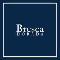 BRESCA DORADA